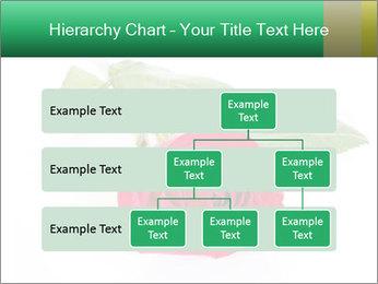 0000079329 PowerPoint Template - Slide 67