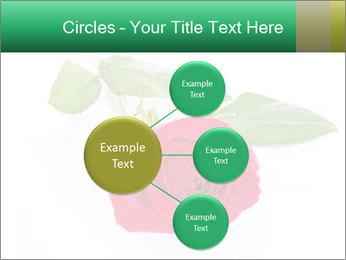 0000079329 PowerPoint Template - Slide 79