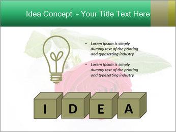 0000079329 PowerPoint Template - Slide 80