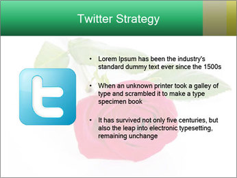 0000079329 PowerPoint Template - Slide 9