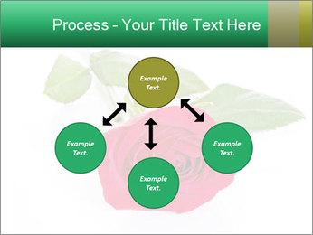 0000079329 PowerPoint Template - Slide 91