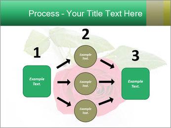 0000079329 PowerPoint Template - Slide 92
