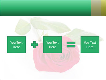 0000079329 PowerPoint Template - Slide 95