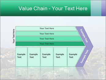 0000079330 PowerPoint Templates - Slide 27