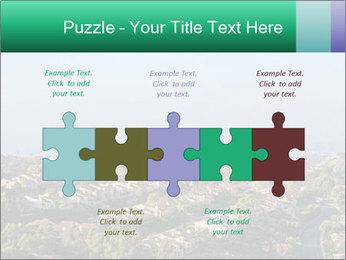 0000079330 PowerPoint Templates - Slide 41