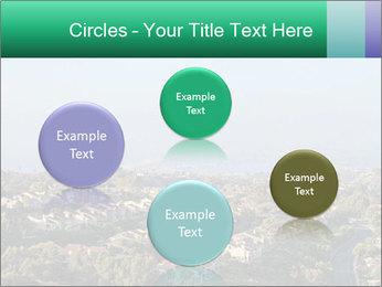 0000079330 PowerPoint Templates - Slide 77
