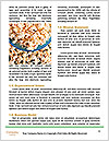 0000079334 Word Templates - Page 4