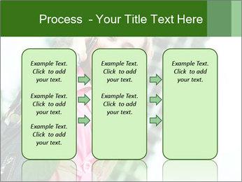 0000079337 PowerPoint Templates - Slide 86