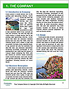0000079341 Word Template - Page 3