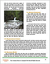 0000079348 Word Templates - Page 4
