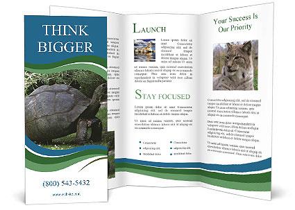 0000079350 Brochure Templates