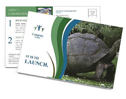 0000079350 Postcard Template
