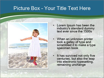 0000079350 PowerPoint Template - Slide 13