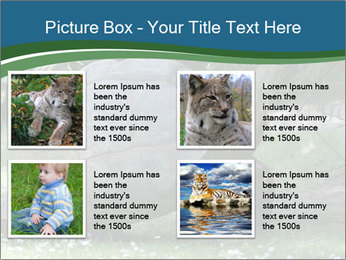 0000079350 PowerPoint Template - Slide 14