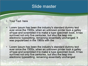 0000079350 PowerPoint Template - Slide 2