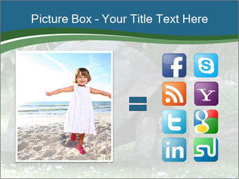 0000079350 PowerPoint Template - Slide 21