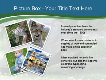 0000079350 PowerPoint Template - Slide 23