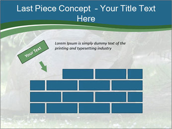 0000079350 PowerPoint Template - Slide 46