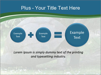 0000079350 PowerPoint Template - Slide 75