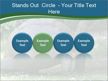 0000079350 PowerPoint Template - Slide 76