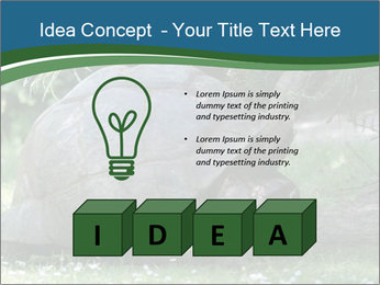 0000079350 PowerPoint Template - Slide 80