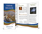 0000079355 Brochure Template