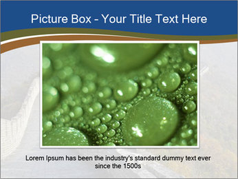 0000079355 PowerPoint Template - Slide 16