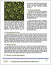 0000079355 Word Templates - Page 4