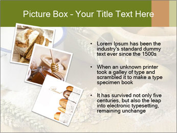 0000079357 PowerPoint Templates - Slide 17