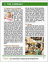 0000079360 Word Template - Page 3