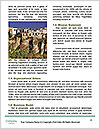 0000079364 Word Templates - Page 4