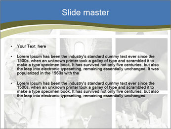 0000079365 PowerPoint Templates - Slide 2