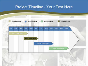 0000079365 PowerPoint Templates - Slide 25