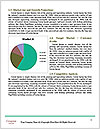 0000079373 Word Template - Page 7