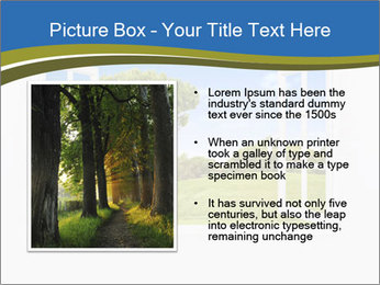 0000079374 PowerPoint Templates - Slide 13