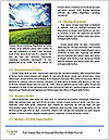 0000079374 Word Templates - Page 4