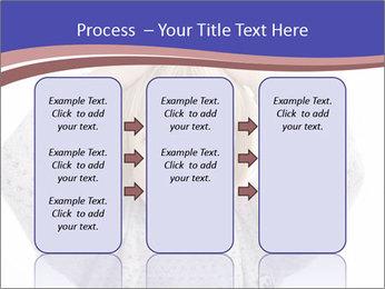 0000079378 PowerPoint Templates - Slide 86
