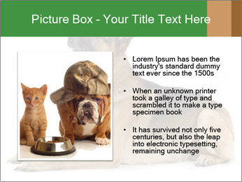 0000079379 PowerPoint Templates - Slide 13
