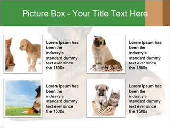 0000079379 PowerPoint Templates - Slide 14