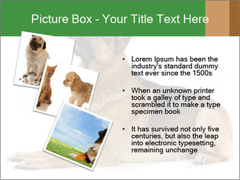 0000079379 PowerPoint Templates - Slide 17