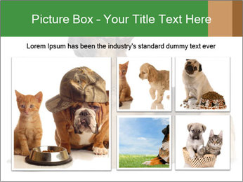 0000079379 PowerPoint Templates - Slide 19