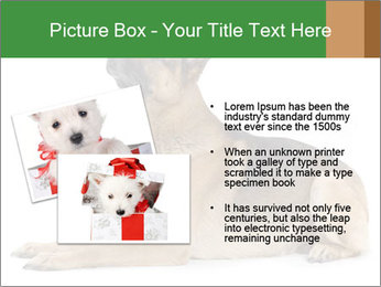 0000079379 PowerPoint Templates - Slide 20