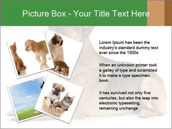 0000079379 PowerPoint Templates - Slide 23