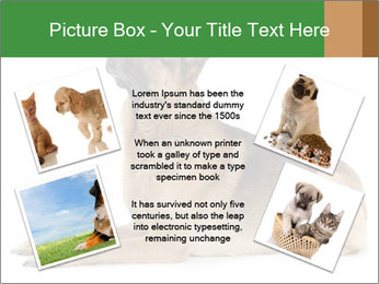 0000079379 PowerPoint Templates - Slide 24