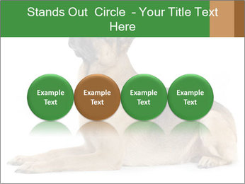 0000079379 PowerPoint Templates - Slide 76