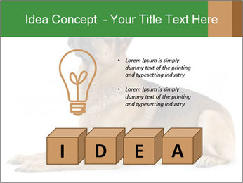 0000079379 PowerPoint Templates - Slide 80