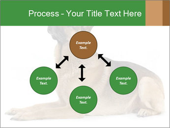 0000079379 PowerPoint Templates - Slide 91
