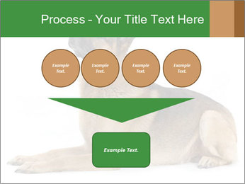 0000079379 PowerPoint Templates - Slide 93