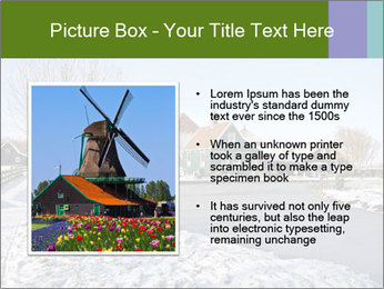 0000079380 PowerPoint Template - Slide 13