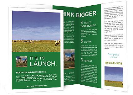 0000079386 Brochure Templates